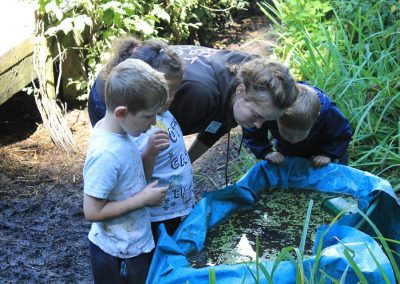forest school pond dip