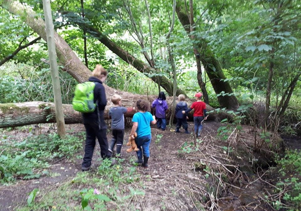 Getting up and out in the fresh air – the best walks with kids across Greater Manchester